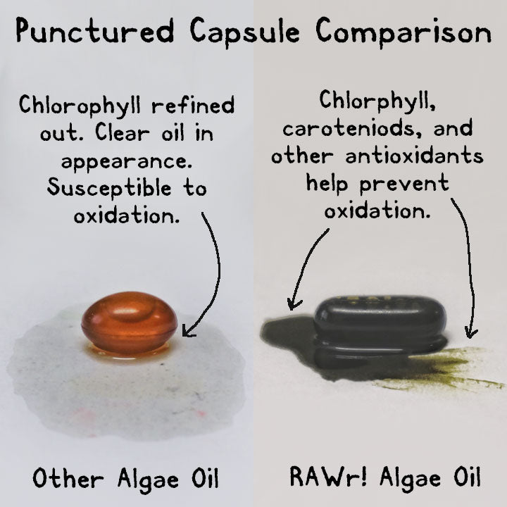 Algae oil capsule comparison