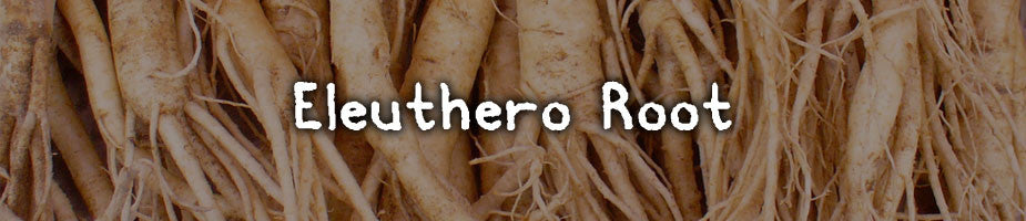 CERTIFIED ORGANIC ELEUTHERO: Commonly called Siberian Ginseng it is an adaptogen root, also a tonic herb in Chinese herbalism. Great for tonifying all organ systems, mainly known to reduce stress, improve athletic and mental performance, as well as fight fatigue.