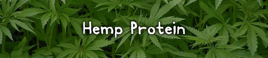 CERTIFIED ORGANIC HEMP PROTEIN: A complete easily digestible protein source with all amino acids. High in essential fatty acids and fiber. Contains B vitamins and vitamin E. Provides all major minerals especially calcium, iron, and magnesium.