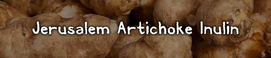 CERTIFIED ORGANIC JERUSALEM ARTICHOKE INULIN: Rich in iron, potassium, vitamin C and B vitamins. Known to improve colon health. It stores energy in the form of inulin fiber, which is a fructose (sugar) molecule that helps beneficial bacteria form as a prebiotic also assisting in natural probiotic production for gut and immune health.*
