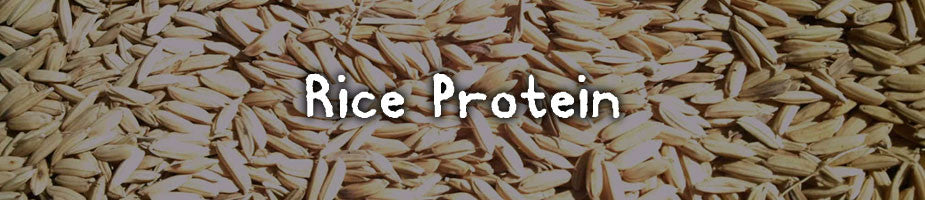 CERTIFIED ORGANIC RICE PROTEIN: A great source of vegetarian protein that is hypoallergenic and contains all amino acids.