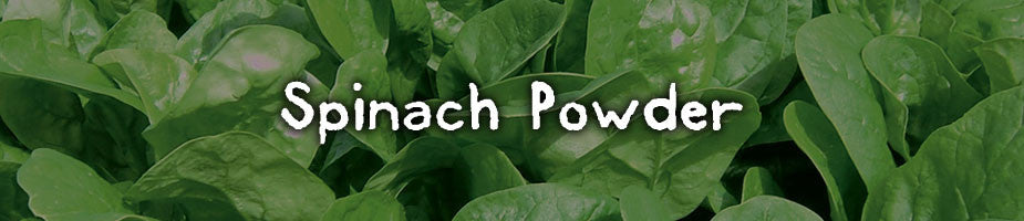 CERTIFIED ORGANIC SPINACH: A common leafy green loaded with vitamins A, B2, B6, niacin, folic acid, C, E, and k. Providing an array of major minerals especially rich in iron and calcium. Also containing phytonutrients, fiber, protein, fatty acids, and plenty of antioxidants known to promote good eye and heart health.