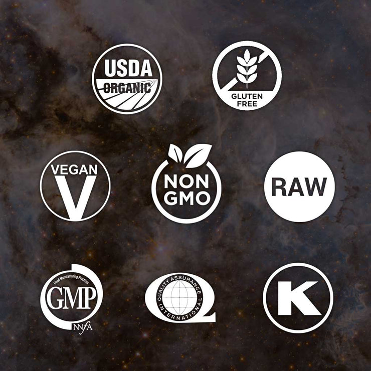 RAWr! PLANT PROTEIN - Sample Pack