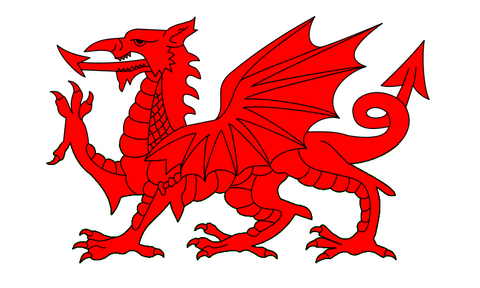 with the permission of the author Y Ddraig Goch