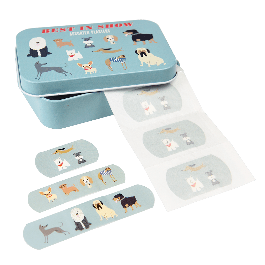 Best In Show Assorted Plasters
