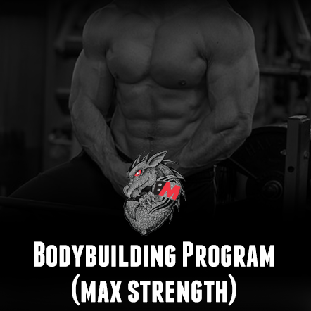 Bodybuilding Training Program Max Strength