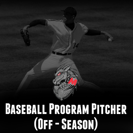Baseball Training Program Pitcher (Off-Season)