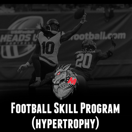 Football Training Program-Skill Hypertrophy