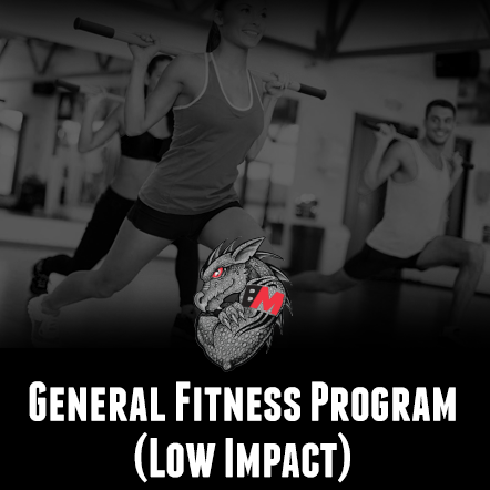 General Fitness Program-Low Impact
