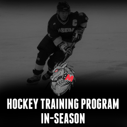 Hockey Training-In-Season