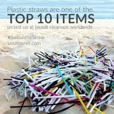 Plastic straws scourge 'should be next' on banned list