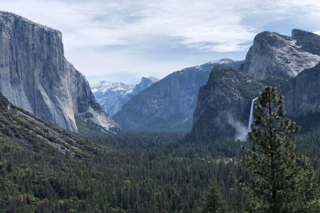 Yosemite Cycling Camp with The Vegan Cyclist