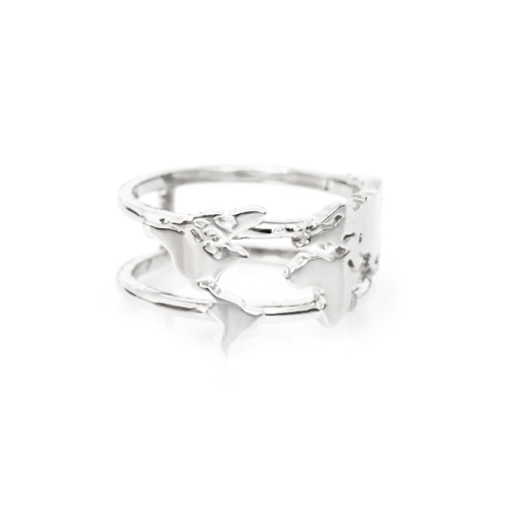 World map ring adventure at your fingertips platinum of the free world map ring platinum gumiabroncs Image collections