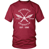 Hogwarts Quidditch LIMITED EDITION