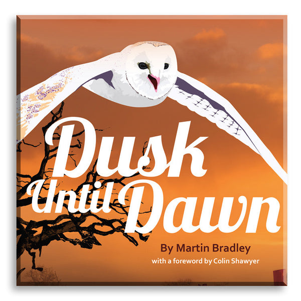 Dusk until Dawn. Book by Martin Bradley.