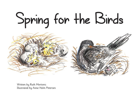 Spring for the Birds - pack of 6