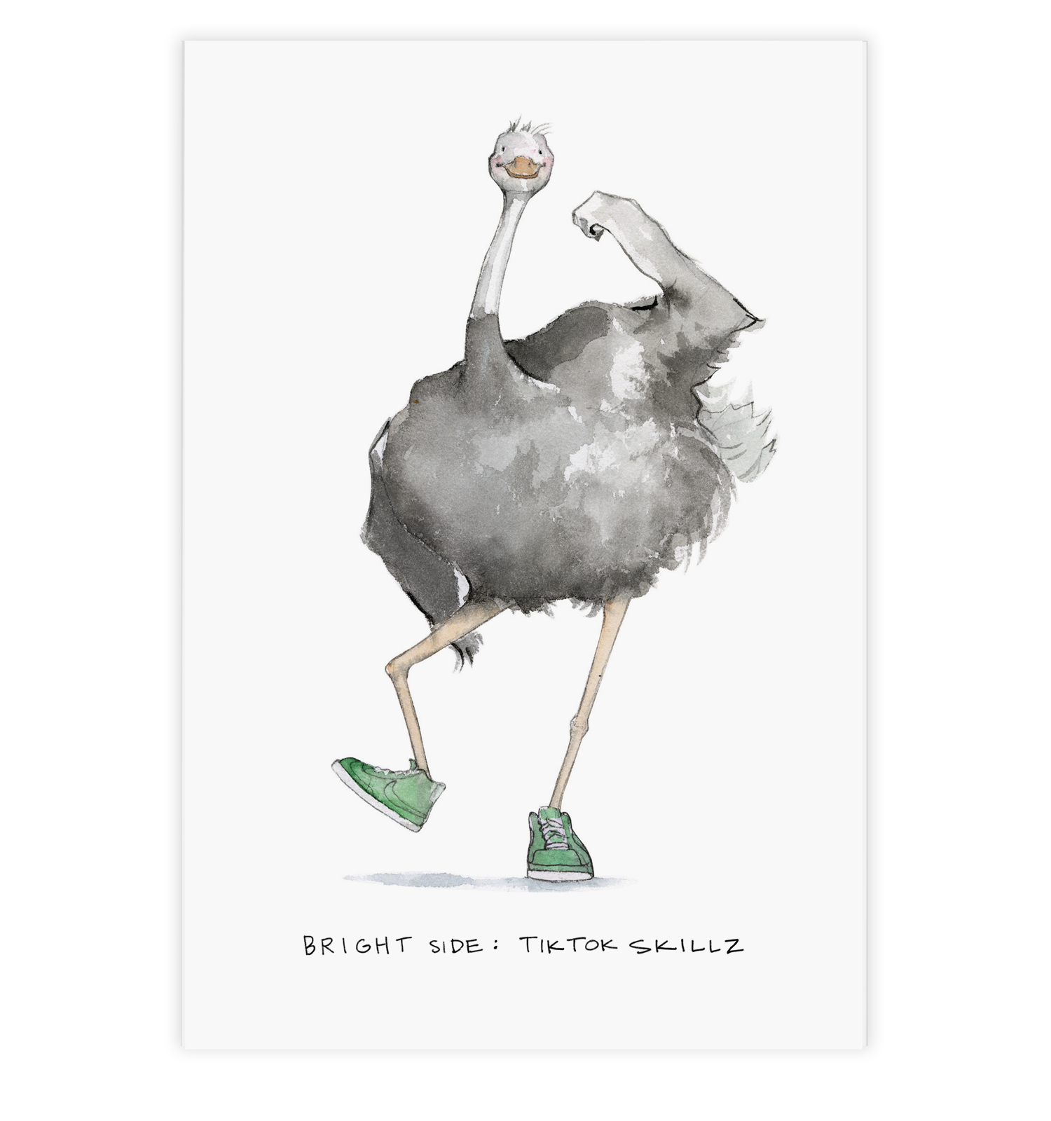 Optimistic Ostrich Postcard