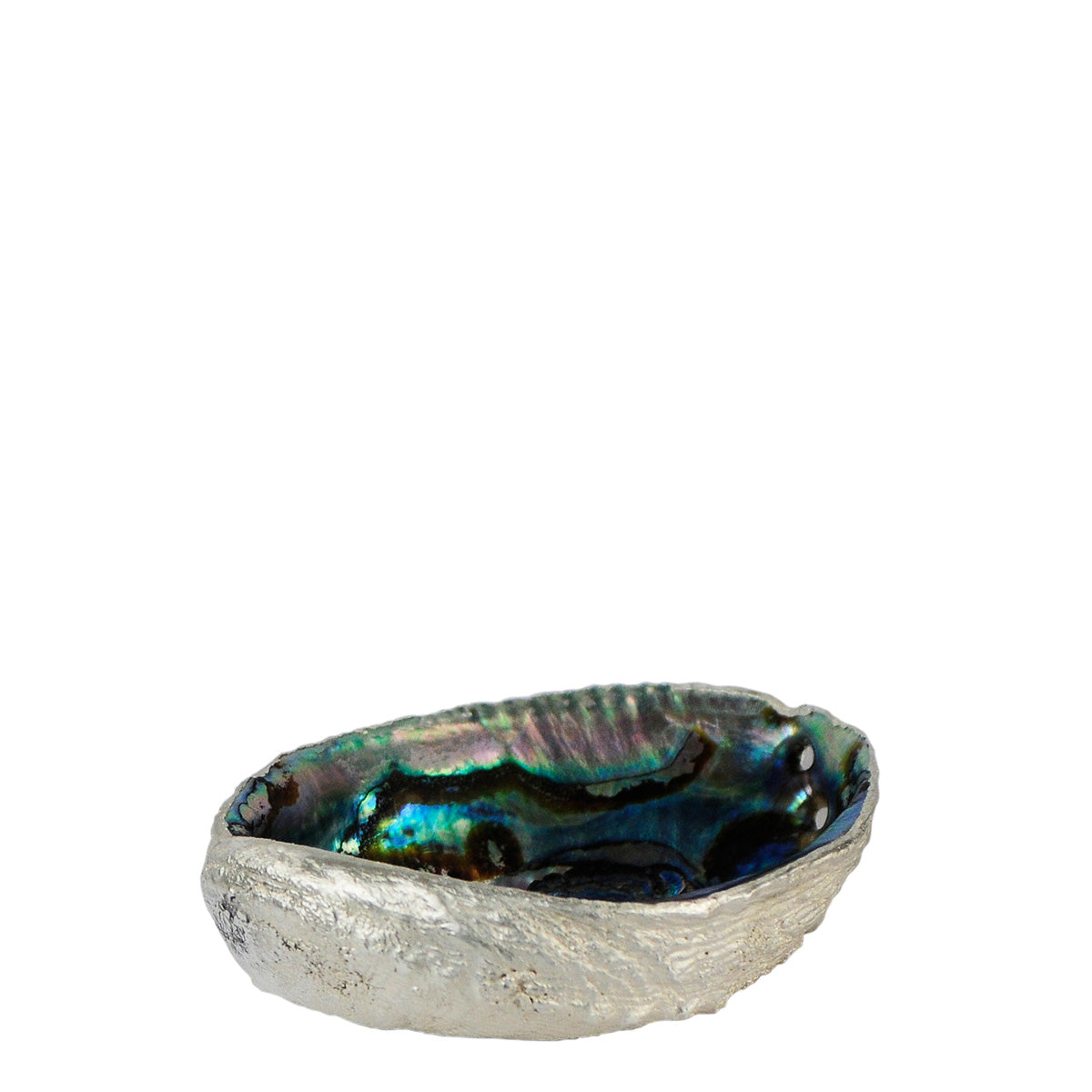 Abalone Shell in Fine Silver