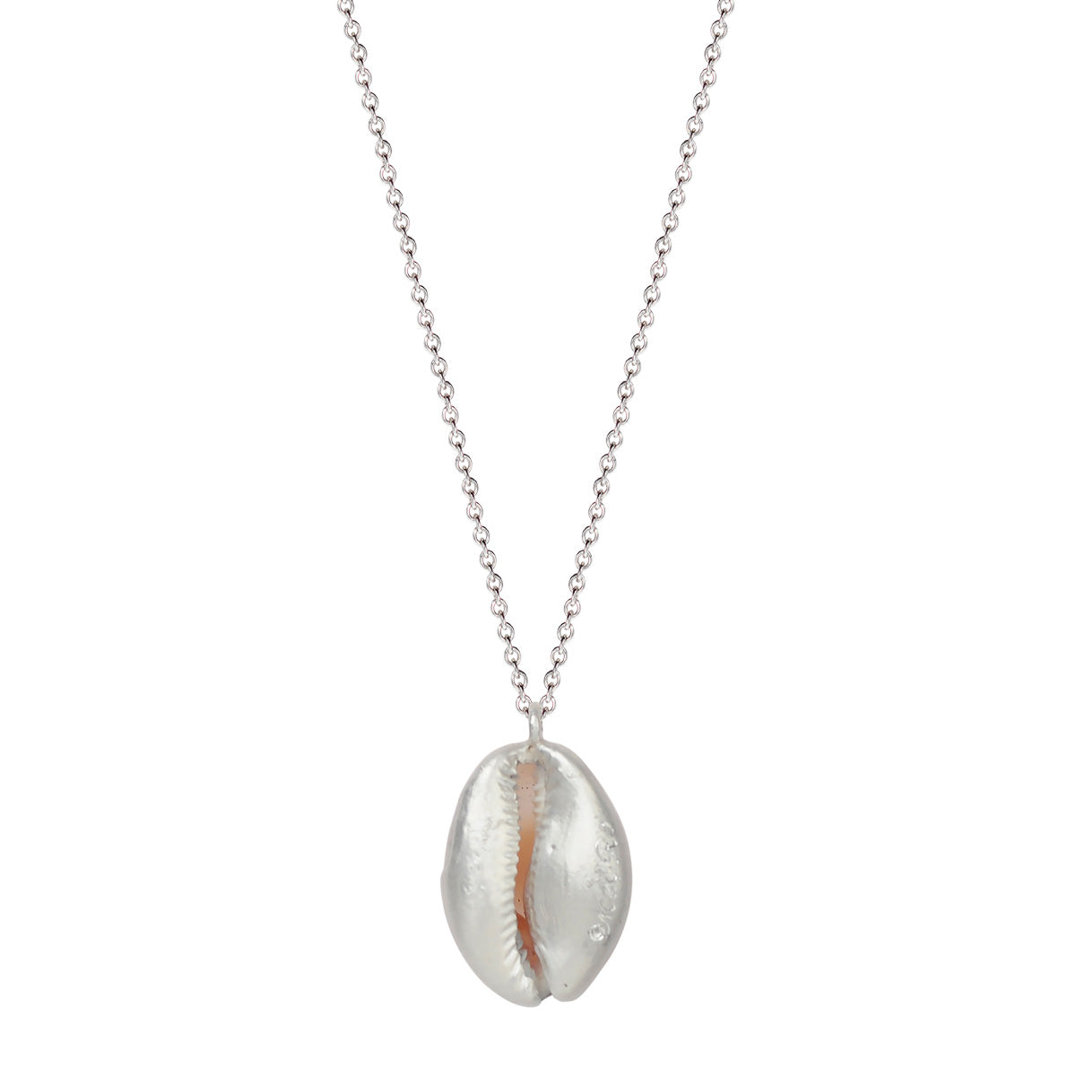 Silver Cowrie Shell on Chain