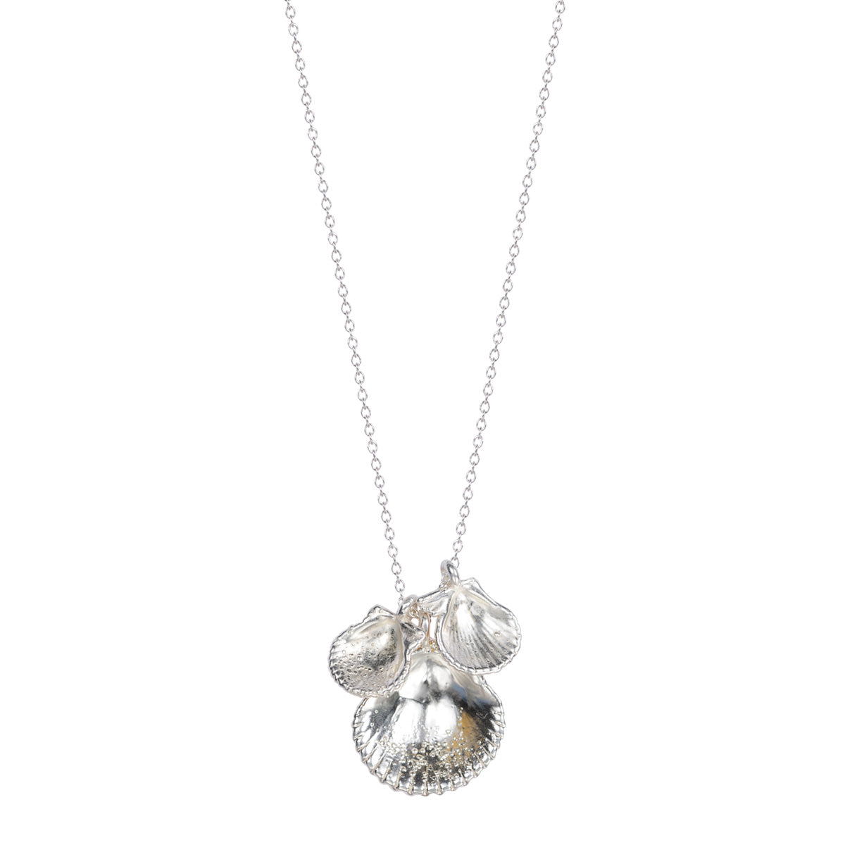 Silver Triple Calico Scallop Shell Necklace on Chain