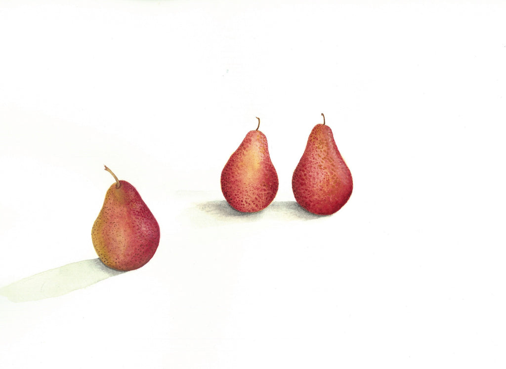 Red Clapp Pears
