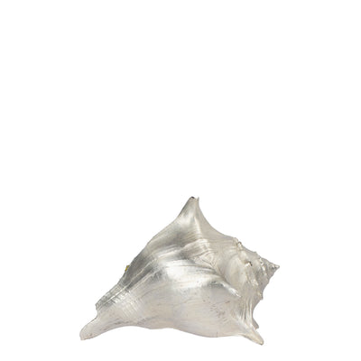 Small Conch Shell in Fine Silver
