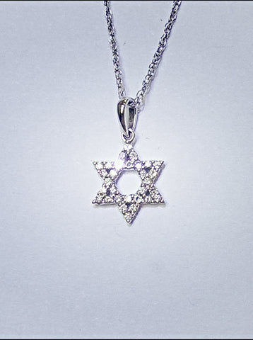 14kt White Gold Diamond Star of David