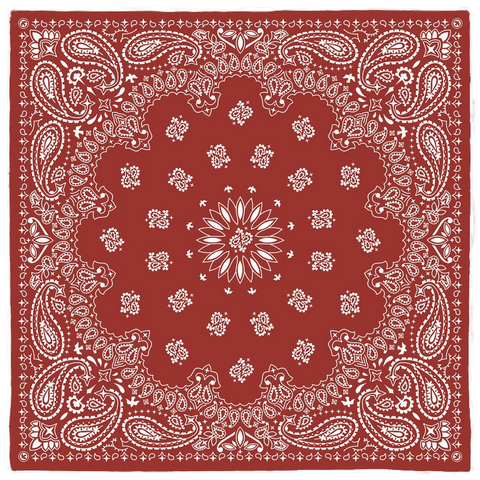 BRJ DOVE ICON TRAD PAISLEY RED / Bandanas