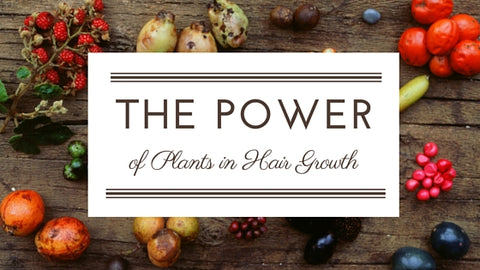 The_Power_of_Plants_for_Hair_Growth
