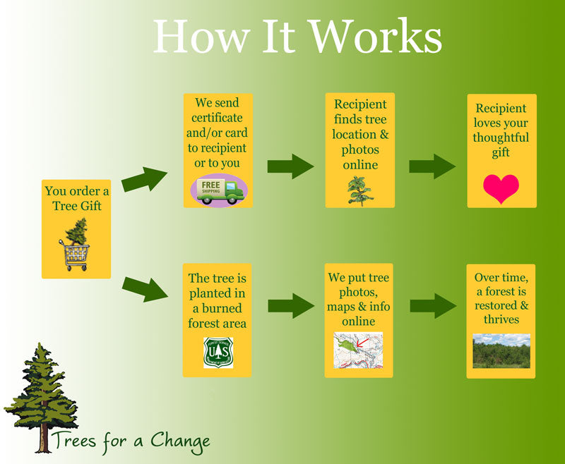Personalized Tree Gift | Trees for a Change | Trees for a Change