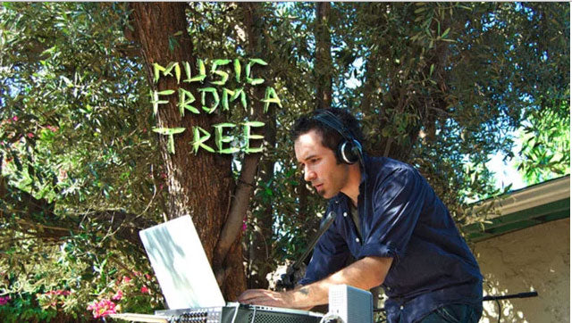 Music-from-trees