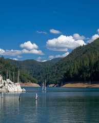 Shasta-Trinity National Forest is in Northern California