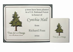 Personalized Grove of Trees