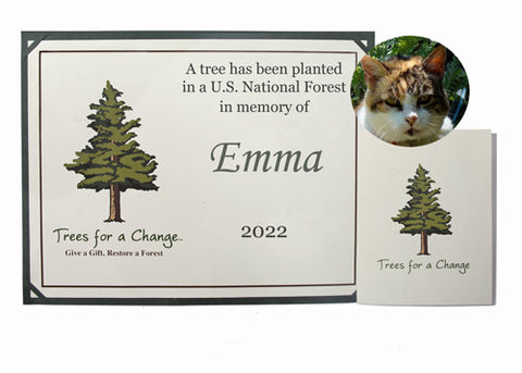 Personalized Pet Memorial