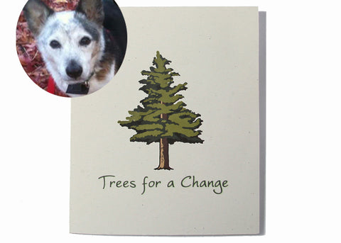 Vet & Pet Business Sympathy Cards