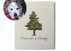 Vet and Pet Sympathy Cards Bulk