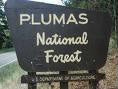 Plumas-National-Forest