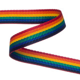 Rainbow Polypropylene Webbing  / Bag Strapping