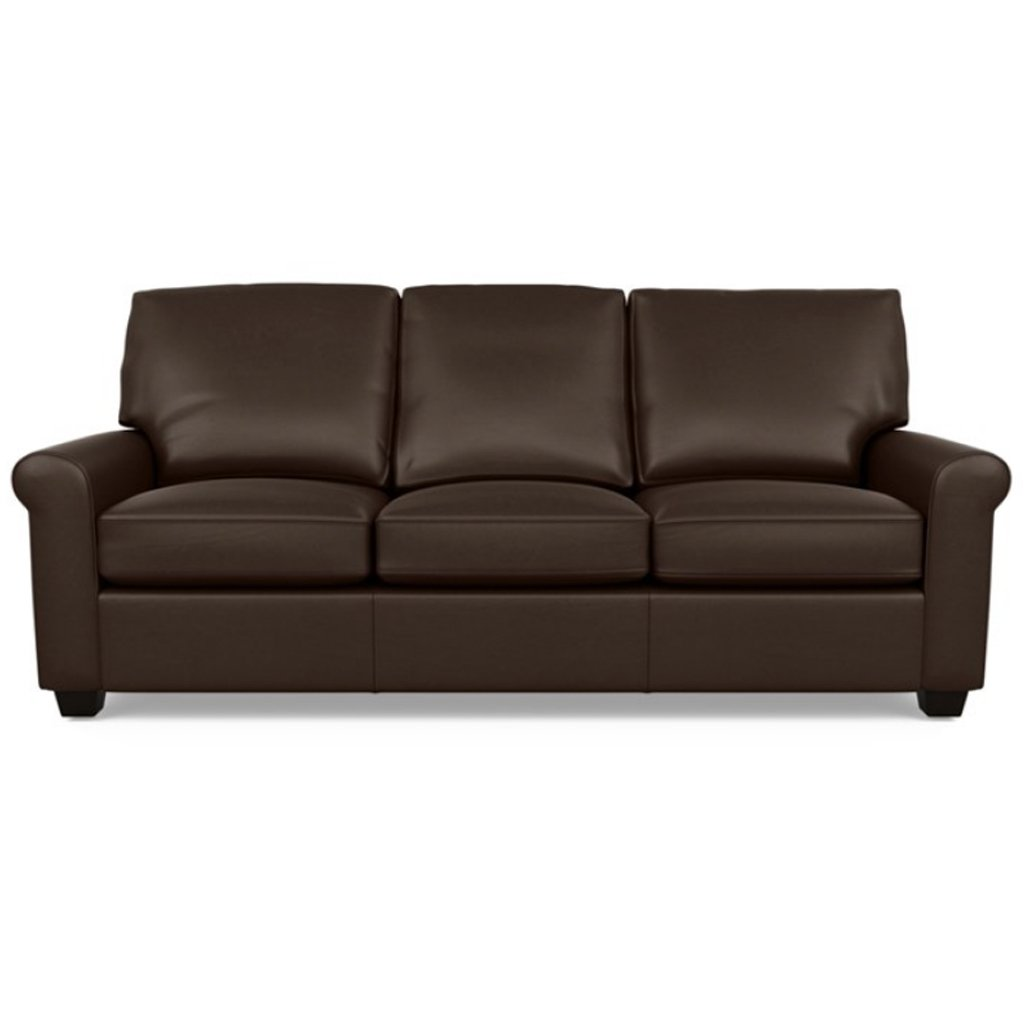 Savoy Leather Sofa by American Leather in Capri Branch