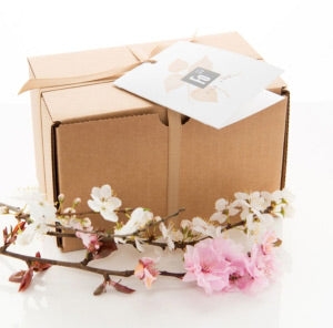 spring seasonal box 2014