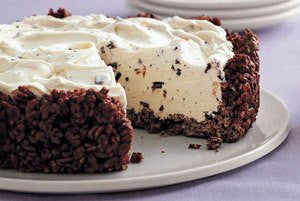 Ice Cream Pie with a Chocolate Granola No Bake Crust!