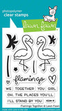 LAWN FAWN: Flamingo Together