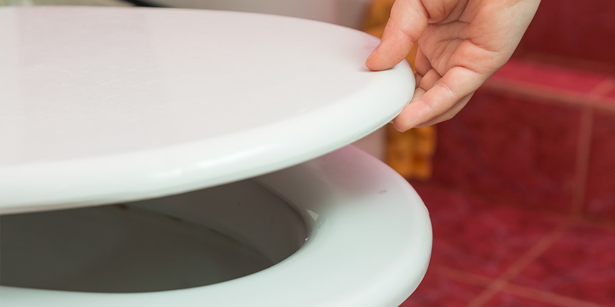5 Best Padded Toilet Seats - 2018 Review - Vive Health