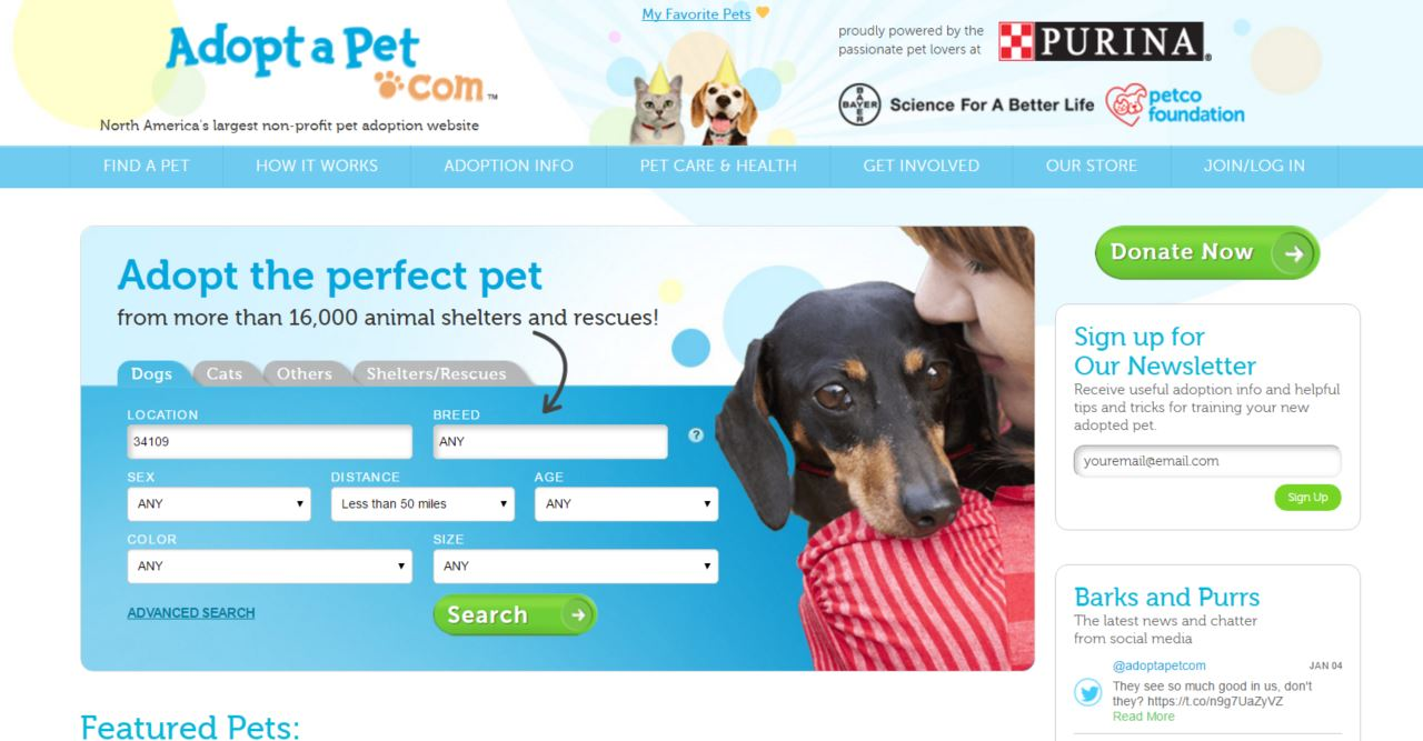 adopt a pet homepage
