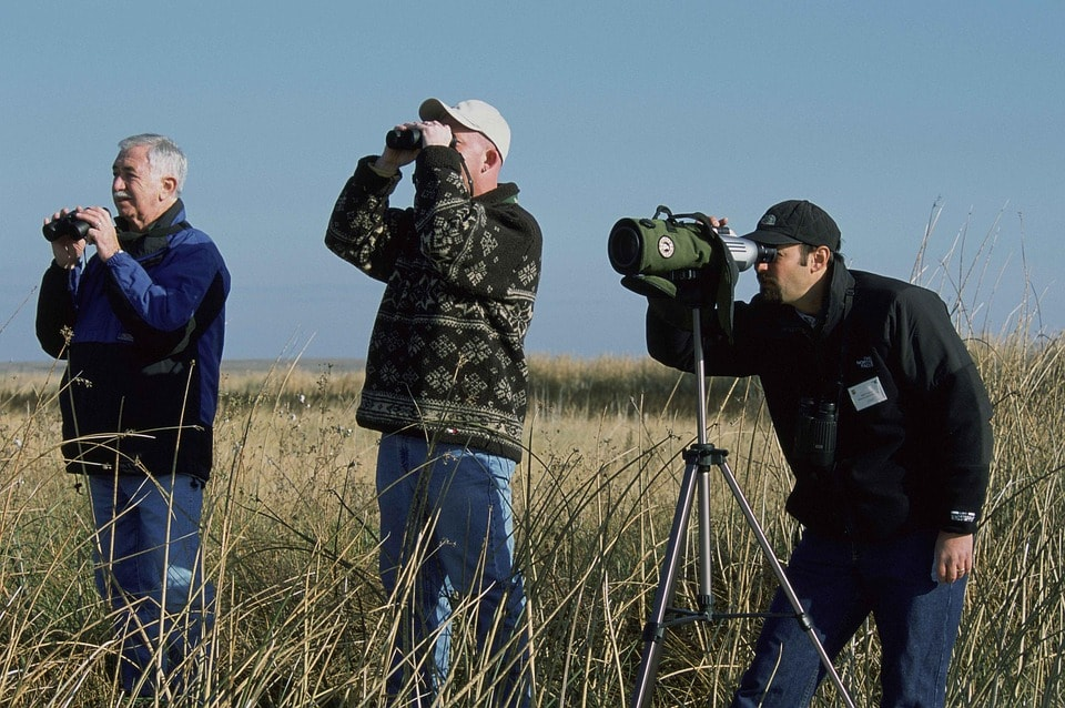 three men birdwatching