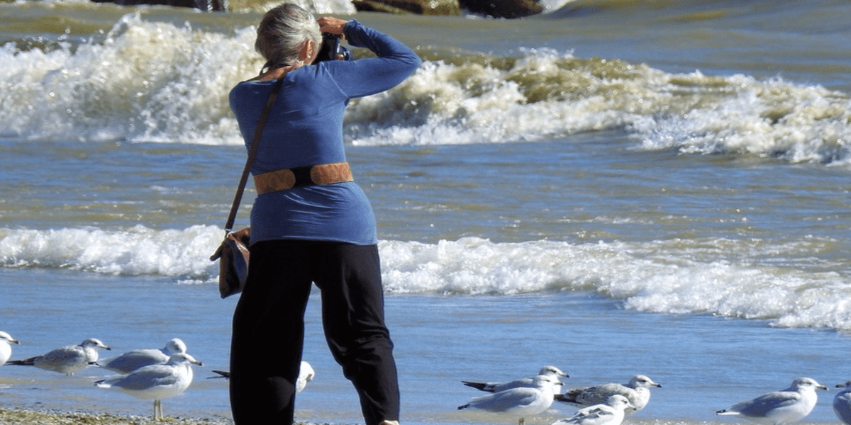 woman taking picture of ocean and birds