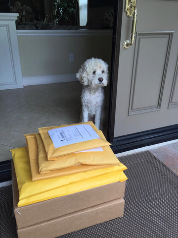 Lucy supervising package pick ups