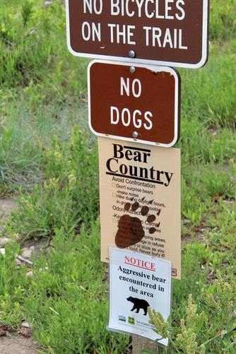 Bear country notice