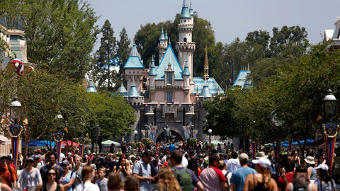 Crowds and queueing lines in Disneyland