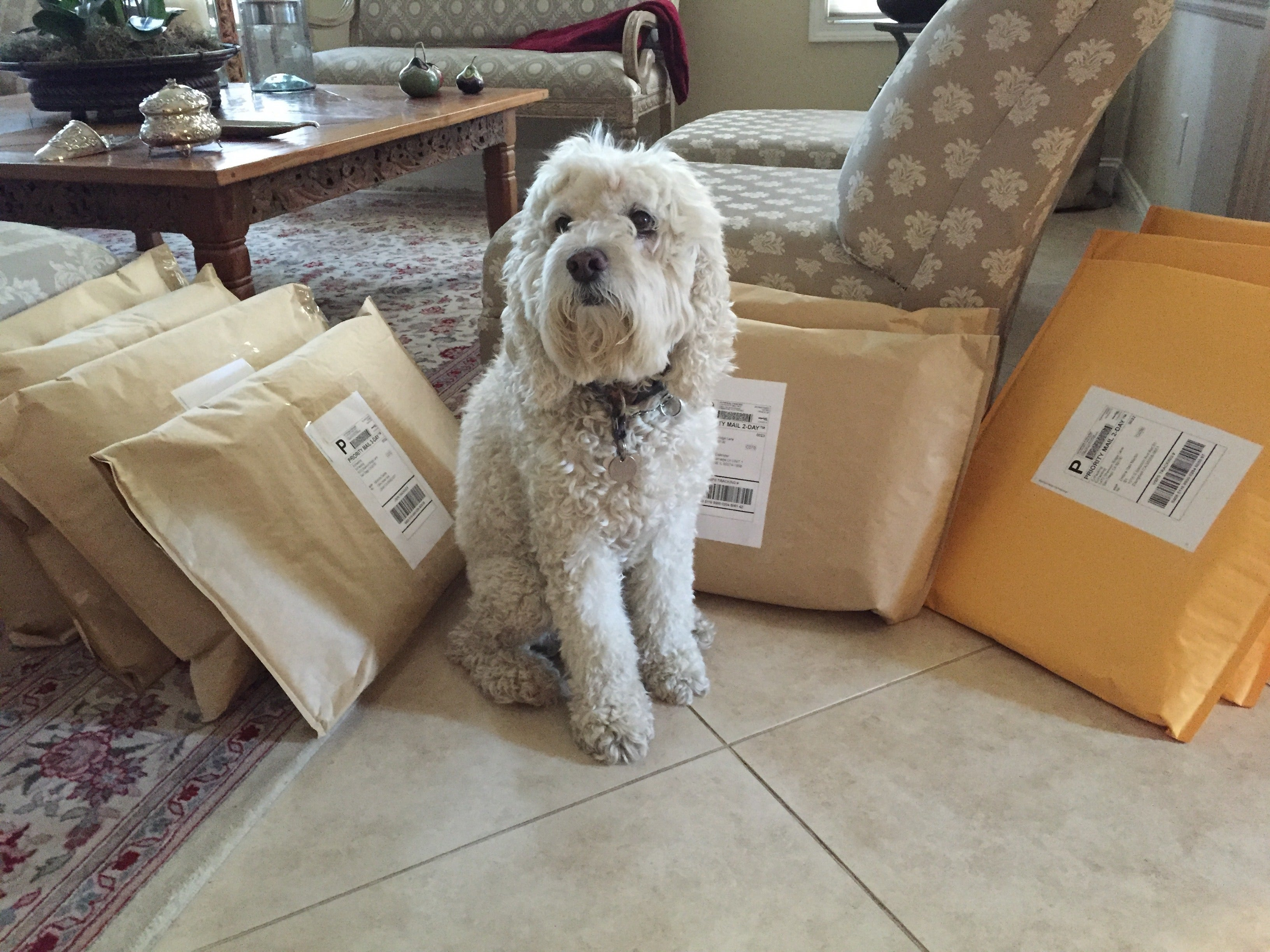 Lucy ready to ship EzPacking cubes